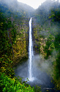 Christopher Holmes Metal Prints - Akaka Falls Metal Print by Christopher Holmes