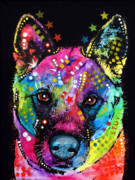 Pet Portrait Paintings - Akita 1 by Dean Russo