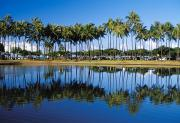 Lanai And Molokai And Other Hawaiian Islands - Ala Moana Beach Park by Mary Van de Ven - Printscapes