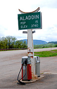 Pumps Prints - Aladdin Wyoming Print by Susanne Van Hulst