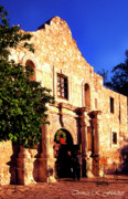 The Alamo Framed Prints - Alamo Evening Light Framed Print by Thomas R Fletcher