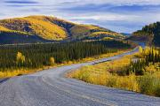 Yellow Line Framed Prints - Alaska Highway Near Beaver Creek Framed Print by Yves Marcoux