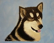 Ontario Portrait Artist Paintings - Alaskan Malamute by Monika Dickson