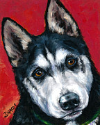 Black Dog Print Posters - Alaskan Malamute Portrait on Red Poster by Dottie Dracos