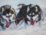 Xmas Paintings - Alaskan Malamute strong and steady by L A Shepard