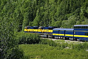 Seeing Art - Alaskan Train by John Greim