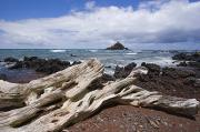 Islet Framed Prints - Alau Islet, Driftwood Framed Print by Ron Dahlquist - Printscapes
