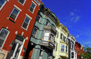 Colorful Houses Prints - Albany Brownstones Print by Elizabeth Hoskinson