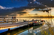 Flooded Photos - Albufera after the rain. Valencia. Spain by Juan Carlos Ferro Duque