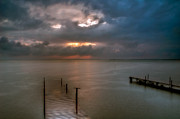 Flooded Photos - Albufera finally the rains. Valencia. Spain by Juan Carlos Ferro Duque