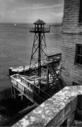 Alcatraz Metal Prints - Alcatraz Metal Print by David  Hubbs