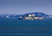 Alcatraz Island Prints - Alcatraz Island in San Francisco Bay Print by David Buffington