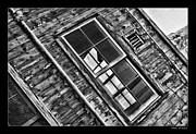 Blake Richards - Alcatraz Windows