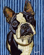 Boston Terrier Art Paintings - Aldo in Blue by David  Hearn