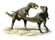 Alectrosaurus Olseni, A Prehistoric Print by Sergey Krasovskiy