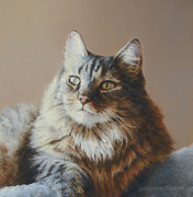 Cats Pastels Prints - Alexi Maine Coon Print by Barbara Groff