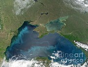 Land Use Posters - Algal Blooms In The Black Sea Poster by NASA / Science Source