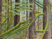Deep Pastels - Alger Forest by James Geddes