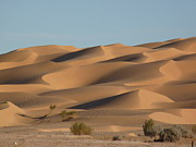 Sand Dune Photos - Algerian Desert by In Salah