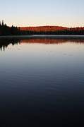 First Light Prints - Algonquin First Light Print by Chris Hill