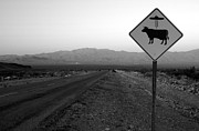 Ufo Photos - Alien Highway by David Lee Thompson