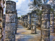 Columns Metal Prints - Alignment Metal Print by Douglas Barnard