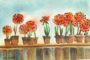 Potted Plants Prints - Alium Pots Print by MaryAnn Cleary