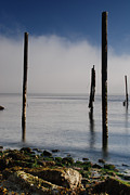 Alki Beach Framed Prints - Alki Pilings in the Fog Framed Print by Brian Pickart