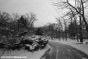 Winter Roads Photo Originals - All Clear. by Timothy Bell