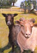 Agriculture Pastels - All Fenced in by Wendie Thompson