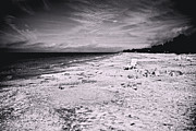 Siesta Key Framed Prints - All of Our Fingerprints Framed Print by Betsy A Cutler East Coast Barrier Islands