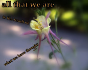 Abstract Columbine Prints - All That We Are Print by Irma BACKELANT