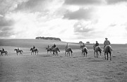 Thoroughbred Horse Art - All The Kings Horses by Bert Hardy