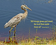 Grace Dillon - All Things Great and...