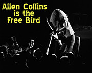 Allen Collins Posters - Allen Collins is the Free Bird Poster by Ben Upham
