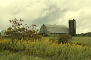 Pennsylvania Barn Print Prints - Allergy Season and Barn Print by Joe JAKE Pratt