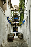 Alicia Morales - Alleys In Spain