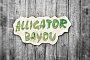 Alligator Framed Prints - Alligator Bayou Framed Print by Scott Pellegrin