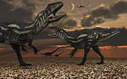 Allosaurus Dinosaurs Stalk Their Next Print by Mark Stevenson