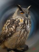 Hera Photos - Almeria Wise Owl living in Spain  by Colette Hera  Guggenheim
