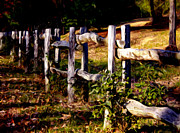 Split Rail Fence Photos - Almost Home by Lisa Livingston-Paul