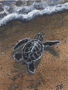 Baby Sea Turtle Paintings - Almost there by Jennifer Belote