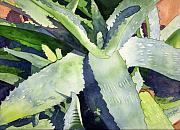 Watercolor Southwest Landscape Paintings - Aloe by Eunice Olson