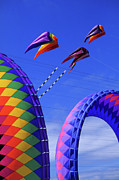 Kites Photos - Aloft by Bob Christopher