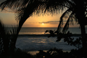 Tropical Sunset Prints - Aloha Aina the Beloved Land - Sunset Kamaole Beach Kihei Maui Hawaii Print by Sharon Mau