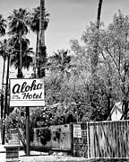 Aloha Hotel Bw Palm Springs Print by William Dey