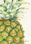 Fruit Paintings - Aloha by Marsha Elliott