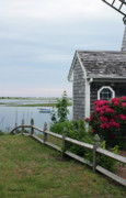 Michelle Wiarda - Along the Bass River South Yarmouth Masssachusetts