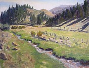 High Country In Colorado Paintings - Along the Creek by Sharon Weaver