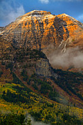 High Altitude Prints - Alpenglow on Mt. Timpanogos Print by Utah Images